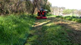 Flail mowers are ideal for thick grass and tall weeds.