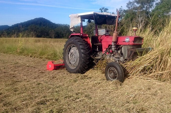 Del Morino FP214 flail mower in action!