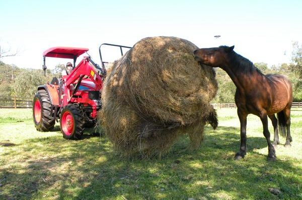 With a 660kg lift, the APOLLO 554 is ideal for feeding out to hungry horses.
